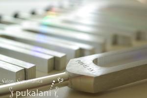 CELL-pukalani_03