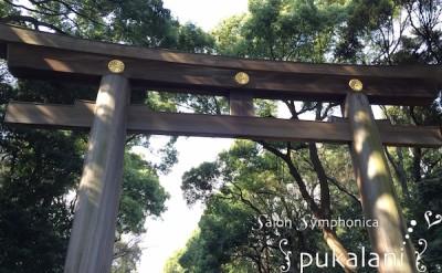 160405_shrine_004