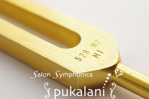MI_006_symphonica_500