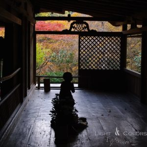 2012年京都紅葉