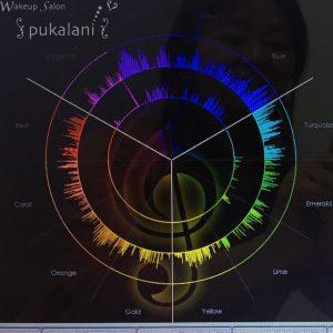 クリスタルチューナーVenus を手持ちのペンジュラムで鳴らした結果