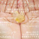 12/10-12/11 クォンタムタッチワークショップ@大阪