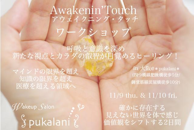 11/9-11/10 木金 Awakenin'Touch ワークショップ@大阪