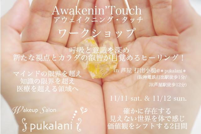 11/11-11/12 土日 Awakenin'Touch ワークショップ@芦屋