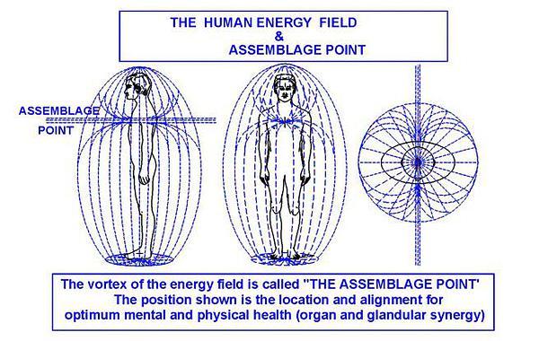 〜祝音〜 REPORT#23: 9/22 体の芯に走る神経・血液と意識の流れを整えて来たるべき変化に備える