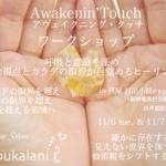 11/6 & 11/7 (火水) Awakenin'Touch ワークショップ@芦屋