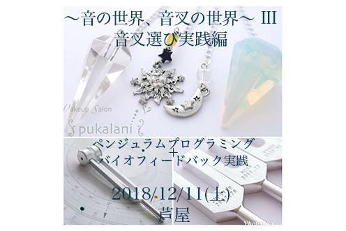 12/11(火) 音叉ワークショップ〜音叉選び実践編〜@芦屋